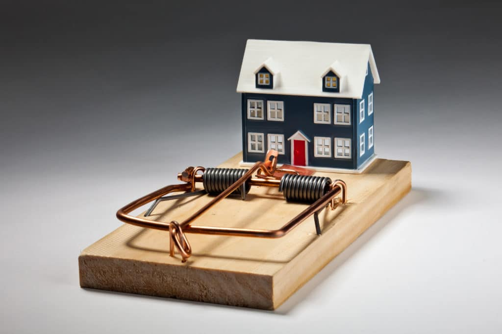 toy house in the mouse trap