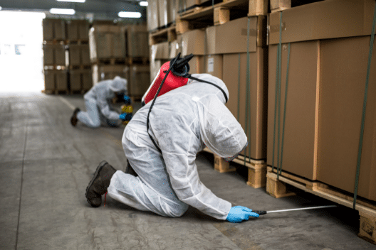 Pest Control services in Aldwych