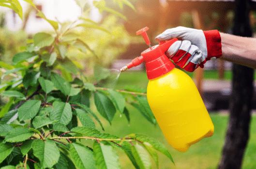 pest control services in Aldgate