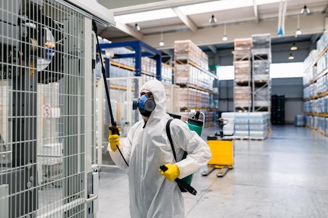 Pest Control Bermondsey