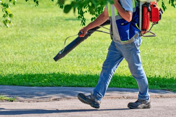 Pest Control Blackfriars