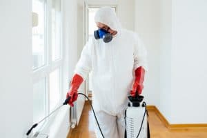 Pest Control Chingford
