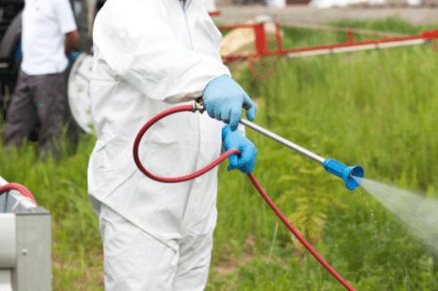 Pest Control Cornhill