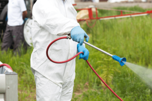 Pest Control Crossness