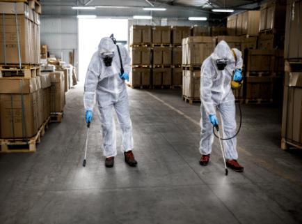 Pest Control Eastfields
