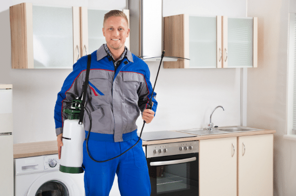Autumn Pest Control Tips for Pest -free home