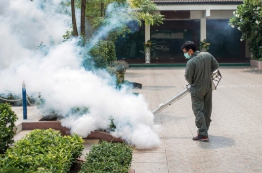 Pest Control Fitzrovia